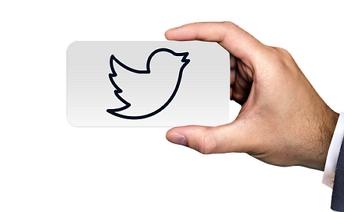 Twitter ptáček Pixabay